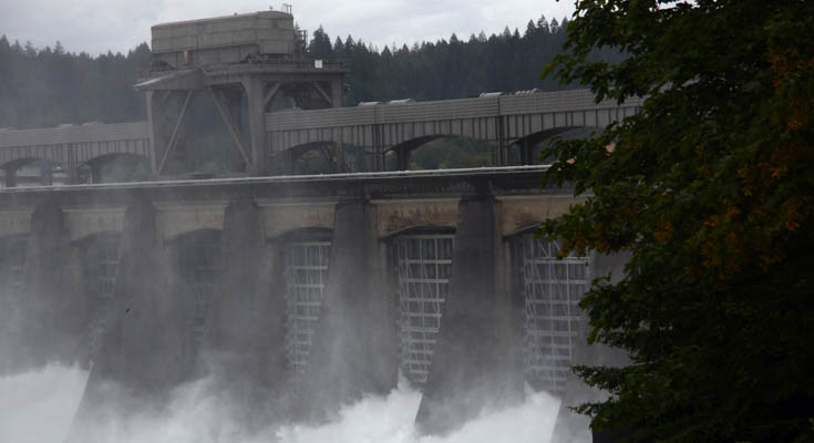 Bonneville Dam: Project photo 3