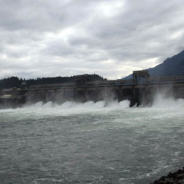 Bonneville Dam: Project photo 2